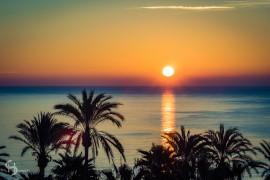 20151115 Mallorca  B152299
